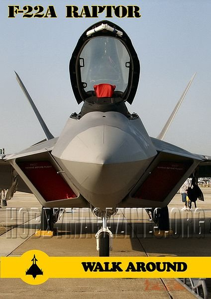 F-22A Raptor Walk Around