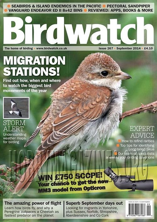 Birdwatch - September 2014
