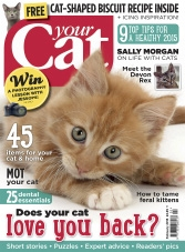 Your Cat – February 2015