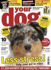 Your Dog - April 2015
