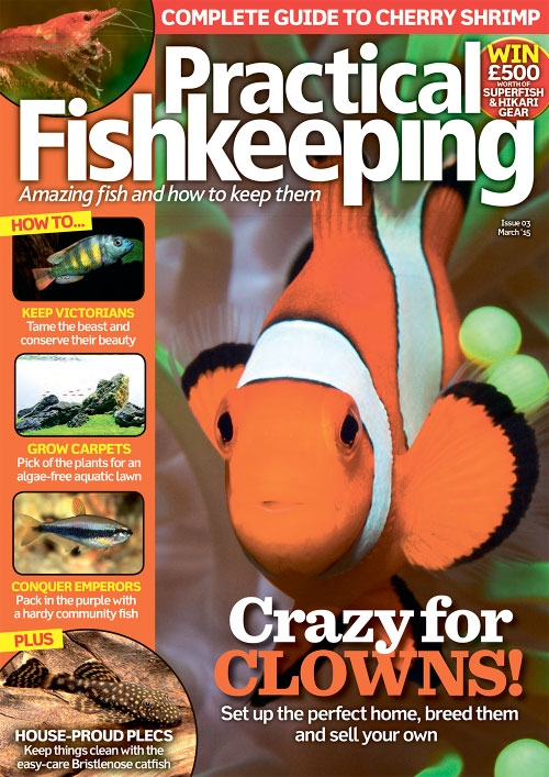 Practical Fishkeeping – March 2015