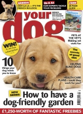 Your Dog - May 2015