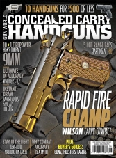 Conceal and Carry Handguns - Fall 2015