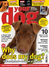 Your Dog - July 2015