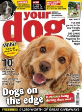 Your Dog - October 2015