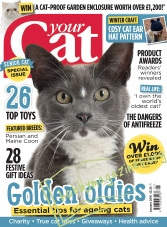 Your Cat - January 2016