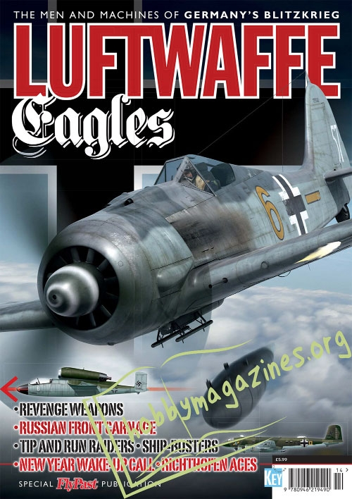 Luftwaffe Eagles : Germany's Blitzkrieg
