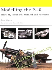 Modelling the P-40 (ePub)
