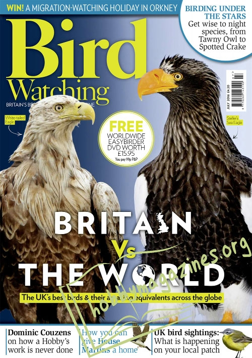Bird Watching – July 2016