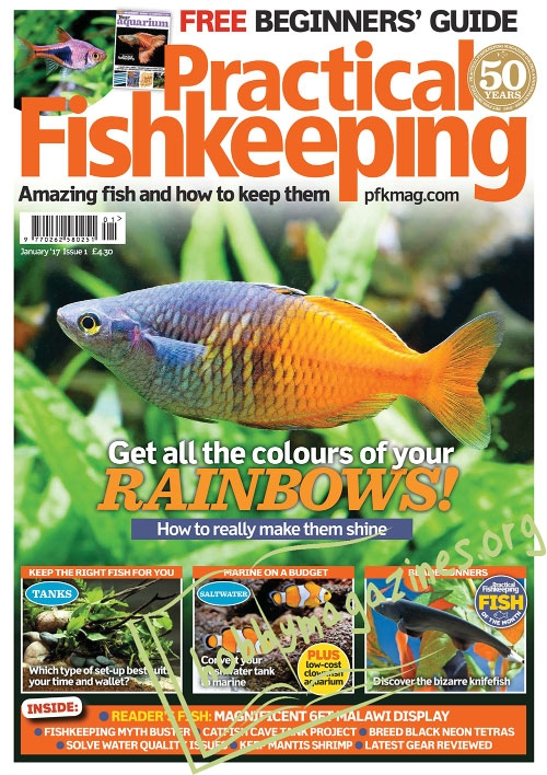 Practical Fishkeeping – January 2017