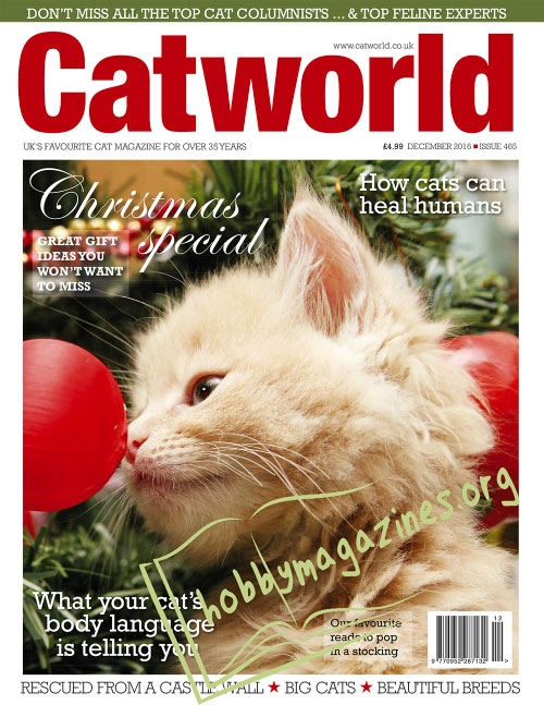 Cat World – December 2016