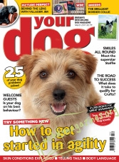 Your Dog – March 2017
