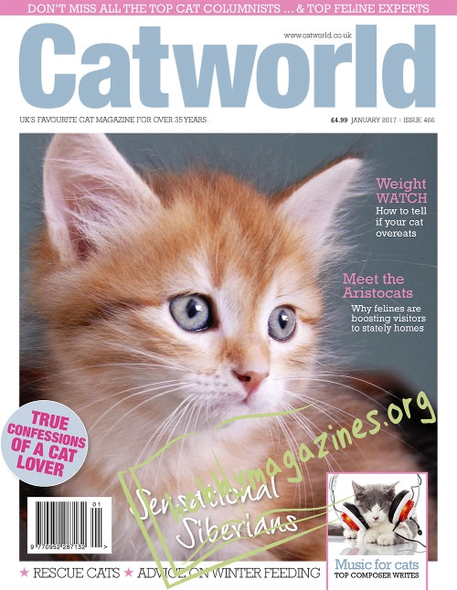 Cat World – January 2017
