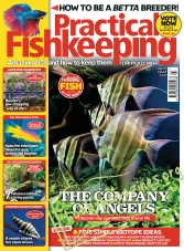 Practical Fishkeeping – July 2017