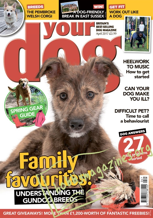 Your Dog - April 2017