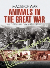 Images of War: Animals in the Great War